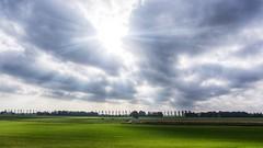 Dutch Landscape 🇳🇱 (Christian Passi - Steher82) Tags: clouds cloud friday flickr gras feld himmel oktober photo nederland netherlands holland landscape sony a6000 alpha outdoor landschaft sun trist contrast green tree bäume baum