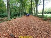 """2017-10-27       Raalte 4e dag     33 Km  (120) • <a style=""""font-size:0.8em;"""" href=""""http://www.flickr.com/photos/118469228@N03/26249265559/"""" target=""""_blank"""">View on Flickr</a>"""