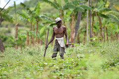 NP_Haiti10
