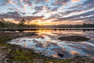 Sunrise @ Hatertse vennen