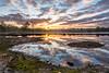Sunrise @ Hatertse vennen (Henk Verheyen) Tags: forest hatertsevennen autumn bos buiten clouds herfst landscape outdoor sunrise vennen water wolken zon zonsopkomst nl netherlands nederland