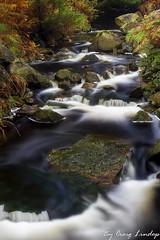 highland river (craiggy13x) Tags: craiglindop craig lindop craiggy13x craiggy 13 x 13x landscape scotland water river rocks trees tree bush