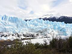 Glaciar Perito Moreno - ARGENTINA (Ana_1965_2010) Tags: fotografiadenaturaleza naturaleza natura nature natur sur surargentino hemisferiosur patagonia patagoniaargentina patagoniaaustral patagonie santacruz provinciadesantacruz areaprotegida areanatural areanaturalprotegida protectedarea naturalarea parque parquenacional parquenacionallosglaciares nationalpark park losglaciares glaciares glaciar glacier theglacier gletscher gletser gletsjer peritomoreno glaciarperitomoreno hielo ice gelo ghiaccio glace campodegelo champdeglace icefield reservadeagua reservadeaguadulce anawilli flickr landscape outdoor hieloscontinentales reservanatural lagoon iceberg cold frío
