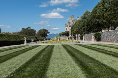 Green lines (Irina1010) Tags: grass lines lawn garden italiangarden biltmoreestate statues pond wall view sky blue clouds beautiful canon ashevillenc