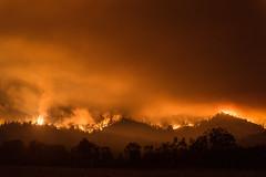 Sonoma County Firestorm (Bob Bowman Photography) Tags: fire firestorm sonomacounty santarosa sugarloafstatepark mthood wildfire california