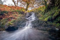 Autumn falls (mickreynolds) Tags: erriffriver fall ireland nx500 october2017 river westport wildatlanticway autumn samyang12mm