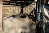 ACP05747.jpg (Reportages ici et ailleurs) Tags: batman nomade tradition sédentaristion koçer mouton bakur yannrenoult turquie kurde hayvan turkey kurdistan