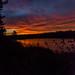Irishtown Nature Park Sunrise