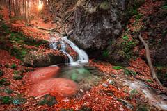 Josefsthaler Wasserfall (Andreas Krappweis - thanks for 3 million views!) Tags: josefstaler josefsthaler wasserfall waterfall cascade autumn fall leafs foliage nikond300 sigma1020mm bavaria schliersee