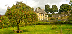 SNOWSHILL MANOR (chris .p) Tags: snowshill manor gloucestershire nikon d610 autumn 2017 view house nt uk cotswold nationaltrust september cotswolds tree