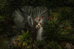 Wedding (♥siebe ©) Tags: nederland bruidsfotografie marriage wedding photography netherlands bruidsreportage trouwdag weddingday siebebaardafotografie trouwen holland bruidsfoto dutch trouwreportage 2017 bruiloft wwwmooietrouwreportagesnl kiss kus bruidspaar couple weddingphotography lovers love bride bruid groom