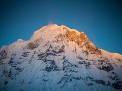 Flash Back - Annapurna Peak at sunrise, ABC (CamelKW) Tags: abc annapurnabasecamptrek annapurnaregiontrek annapurnasanctuary fishtail kathmandu mbc machapuchare machapucharebasecamp nepal pokhara trekking