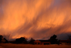 What a way to start your day! (windyhill623) Tags: storm stormcloud stormlight morning morninglight orange dawn sunrise fall autumn beautifullight utah usa unitedstates outdoor landscape skyscape sky