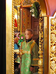 Преподобного Сергия (46)