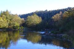 IMG_5964 (sebastiangrasegger) Tags: passau oberilzmühle ilz fluss ilztal bäume herbstfarben wald steine steineimwasser