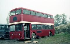 Ribble NCK630 [dealer stock] 800422 Hadleigh [jg] (maljoe) Tags: ribblemotorservices ribblebuses ribble rms nationalbuscompany leyland atlantean leylandatlantean