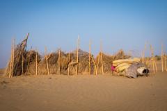Rajasthan - Jaisalmer - Desert Safari with Camels-42