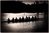 Late Evening Rowing (tatzlum.photo) Tags: thamespath thames silhouette river bourneend highcontrast rowing 135mm cookham blackandwhite monochrome