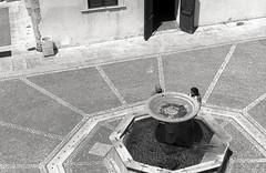 Castello di Genazzano, Piazza. (Razgriz88) Tags: pellicola pentax pentaxmx mx film street bw bianco bianconero blackwhite biancoenero nero pentaxsmctakumar55mmf18 takumar f18 ilford ilfordfp4plus125 125iso