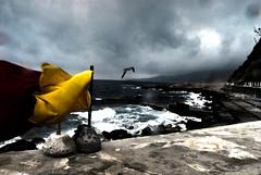 """Caponero (wallace39 """" mud and glory """") Tags: mare sea cielo sky nuvole clouds bandiere flags gabbiano seagull mareggiata tidalwave estate summer ospedaletti liguria italia italy"""