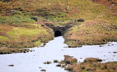 Tunnel North (R~P~M) Tags: train railway wales cymru uk unitedkingdom greatbritain tunnel moelwyn ffestiniograilway abandoned disused narrowgauge gwynedd