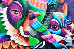 Of Foxes and Birds (Torsten Reimer) Tags: mural usa northamerica nyc newyorkcity unitedstatesofamerica newyork graffiti wall animals bushwick colour unitedstates us