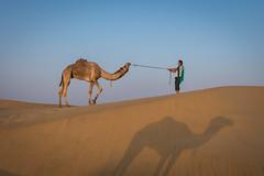 Rajasthan - Jaisalmer - Desert Safari with Camels-51