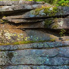 Striations (Tim Ravenscroft) Tags: rock texture striations whitemountains newhampshire hasselblad hasselbladx1d x1d