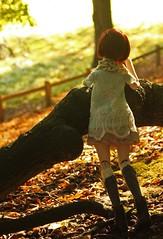 Meadow (MarloesK) Tags: autumn dollfie dream sister mmd ddh10 custom momo outside