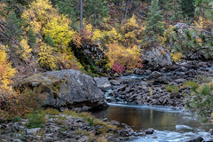 little salmon river-10-07-17-5 (Ken Folwell) Tags: rivers creeks water rocks forests fallcolors reflectins boulders outdoors landscapes idaho canon5dmkiii rock creek tree river landscape grass stream