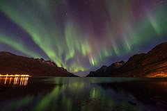 autumn night in Ersfjordbotn (John A.Hemmingsen) Tags: aurora borealis nordnorge night auroraborealis northernlights ersfjordbotn tromsø troms norway nordlys astronomy fujifilm