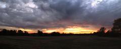Dusk over the Field (Steve InMichigan) Tags: dusk sunset sunsetglow panoramic eveningsky field treeline canonrebelt5i canon1855mmlens