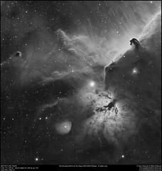 The Horsehead and The Flame Nebulae in H Alpha (Crop) (Terry Hancock www.downunderobservatory.com) Tags: qhy qhy367c universetoday sky cosmos astrophotography astroimaging