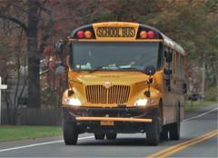 Durham School Services #29752 (ThoseGuys119) Tags: schoolbus newyork durhamschoolservices ic ce albanyny ac