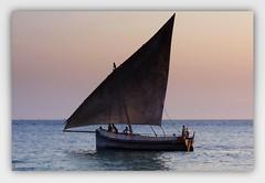 avec ce joli bateau, je galère sur Flickr... (Save planet Earth !) Tags: océan zanzibar dhow bateau stonetown kodak amcc travel voyage tanzanie