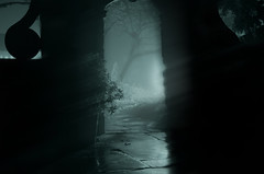 Enter If You Dare... (Philip R Jones) Tags: creepy horror mystery scary halloween halloween2017 dare scare scared fear arch