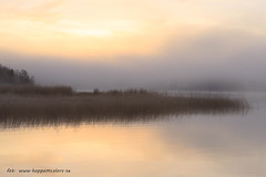 20171107003160 (koppomcolors) Tags: koppomcolors sulvik glafsfjorden värmland varmland sweden sverige scandinavia