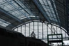 Halle de la gare Saint-Jean Bordeaux