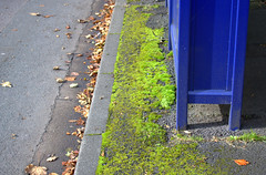 Green and blue at a Preston bus stop (Tony Worrall) Tags: pastel foliage geometric abstract pattern texture symmetry minimalism diagonal surreal serene depthoffield bright color colours colourful metal blue painted green road street urban ashtononribble stand busstop preston north northwest lancs lancashire england northern uk update place location visit area county attraction open stream tour country welovethenorth unitedkingdom english british capture outside outdoors caught photo shoot shot picture captured moss wild weeds