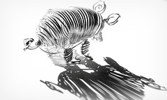 I draw the line at stripes (flowrwolf) Tags: smileonsaturday linesandstripes metalpig stripes lines monochrome blackandwhite highkey white whitebackground vivid bright metal metalwire metalwirepig pig silver indoor inside indoors canon canon650d macro macrophotography macrophotograph tokinalens makro macrolens flowrwolf