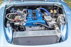 Lotus Elan 26R engine (John Tif) Tags: 2017 crystalpalace lotuselan26r car motorspot