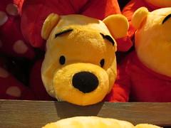 Winnie the Pooh searching for honey. (vickilw) Tags: winniethepooh disney bear toy 7daysofshooting week16 shelfshelves texturetuesday 6ws