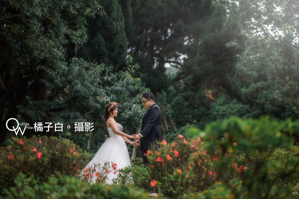 敬諺+騰儀-50