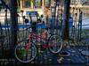 _DSF3655.jpg (ronaldthain) Tags: edinburgh leith lothians scotland uk bicycle coast coastal cycling docks harbor harbour iron landscape leisure lifestyle metal port railings recreation shore urban wrought