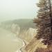 Kreideküste im Nebel