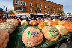 Circleville Pumpkin Show (dpsager) Tags: circleville circlevillepumpkinfestival dpsagerphotography festival halloween ohio pumpkin
