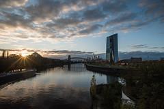 2017 Ein Schiff wird kommen (mercatormovens) Tags: frankfurt ostend ezb main fluss wasser brücke skyline hochhaus ecb