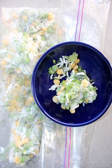 Rattie Treat: Frozen veggie mixture, super practical! (trulyjuly) Tags: creativecommunications contentmarketing trulyjuly yourstrulyjuly marketing workshop talk creativewriting book communication strategy copywriting webwriting mobilewriting mobilecontent creative photography video socialmedia consultancy blog articles journalism bilingual english german rats petrats mimi mimivonderstrasse ratlets ratties ratpups ratkittens cute pets mousies wildrat mimivdstrasse rattiedaughters star cuties love cuddles bestpets snug soft cuddly adorable sweet