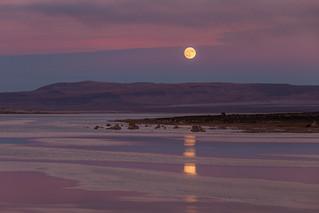 Harvest Moon Rise at Mono Lake