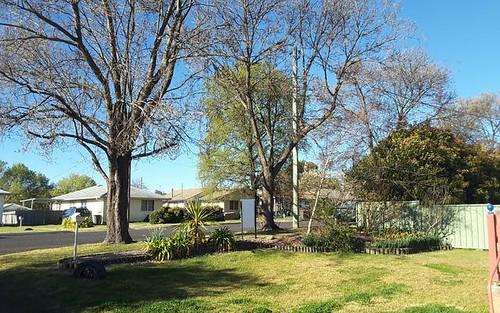 - Scott Street, Glen Innes NSW